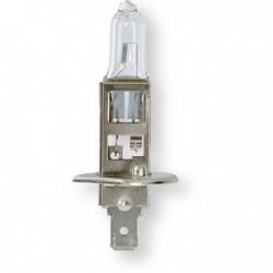 LAMPARA H1 12V 55W HOMOLOGADO